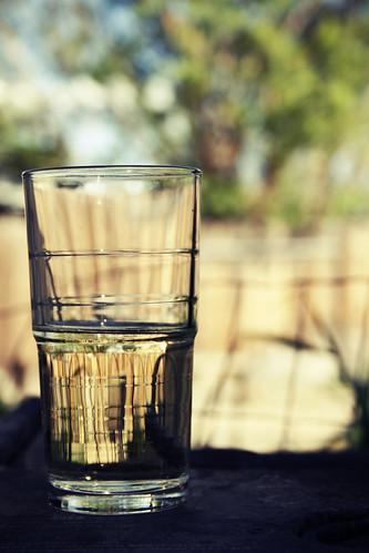backyard vino