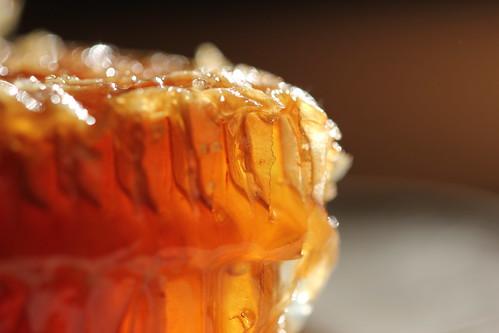 honeycomb and comb honey