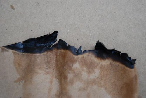 Burnt Paper Texture 08