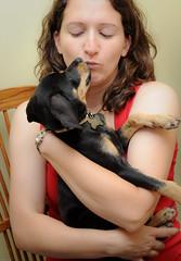 DEF_1843-5 (WonderFlea) Tags: dog playing cute beagle puppy toys mutt mix eyes nikon hound ears cutie jpg rambler jpeg doggie d700