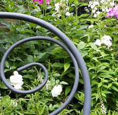 hoekje in de tuin (vonzies) Tags: flowers garden insects fujifinepix