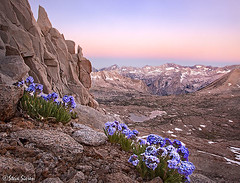 Eastern Sierra Nevada - Le Conte Canyon View (Steve Sieren Photography) Tags: park sky john photo mt steve scenic canyon basin kings national le wilderness muir pilot pilots workshops conte agassiz 13er dusy sieren