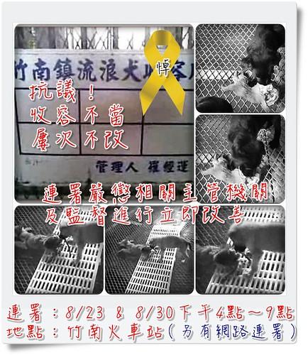 「連署抗議」竹南收容所收容不當,屢次不改,為流浪動物發聲!懇請網友支持連署-2009-08-19更新
