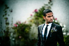 Rohan (TGKW) Tags: flowers wedding portrait people man scotland tie suit sri rohan lankan brechin 9158
