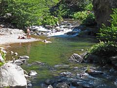 20090829 Deer Creek on Hwy 32