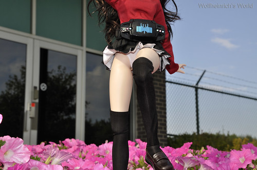 Dollfie Dream 人偶 DD娃娃 Tohsaka Rin 遠坂 凛