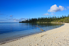 Isle of Pines 2009, New Caledonia (Raphael Vignes) Tags: blue camping fish beach water bay warm crystal clear tropical reef coconuts nouvellecaldonie newcaledonia corals translucid cocotiers naturalpool kunie kuto kanumera piscinenaturelle betico2 iseofpines
