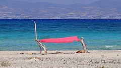 Chrissi island (Cretan Villa Hotel) Tags: life travel blue sea summer vacation beach vacances holidays urlaub hellas kreta creta greece grecia crete griechenland spiaggia lassithi ierapetra libyansea    gaidouronisi lybiansea   inselchrissi