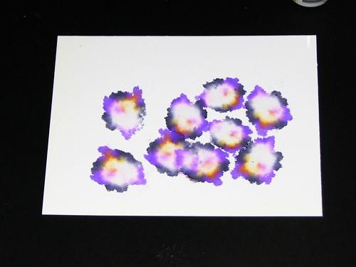 ai violets 005