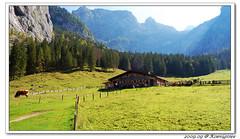 47 (bearnbear - Bavaria) Tags: obersee knigssee