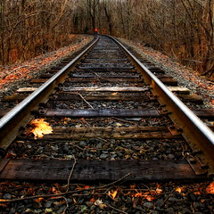 Take The Long Road Home (Baab1) Tags: autumn trees winter red fall leaves nikon curves maryland trains autumnleaves squareformat rails greatshot railroads railroadtracks d300 vanishingpoints diminishingperspective princegeorgescountymaryland 1755nikkor pgcountymaryland travelsofhomerodyssey croommaryland southernmarylalnd