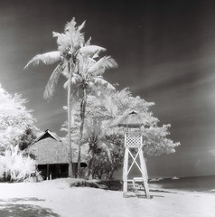 tower, trees, cottage, infrared (darkcanopy) Tags: travel trees blackandwhite bw tower mamiya film tourism beach analog ir mono blackwhite tour noiretblanc philippines dream infrared bohol maco dreamy whites 28 analogue ph expired  mamiyac3 analogphotography f28 panglao hoya twinlensreflex c3  80mm normallens r72 filmphotography hoyar72 macophot mamiyasekor macoir820c 80mmf28 mamiyatlr 80mm28 macophotir820c ir820c mamiyac380mmf28