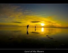 a moment on Salt Lake... (Ozcan MALKOCER) Tags: cloud lake reflection turkey türkiye ab saltlake 1020mm reflexions ankara sarı tuzgölü renkler silüet şereflikoçhisar topshots topseven canonrebelxti great123