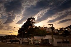 Darlington Road, Miramar. (pixelgrit) Tags: mywalktowork