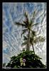 Khraibut (خريبط) Tags: kuwait kuw خريبط khraibut maitham ميثم art photo gulf الكويت فن التصوير نيكون كانون nikon canon bmw k1200lt lt k1200 صور تصوير كويت الناصر adventure biker
