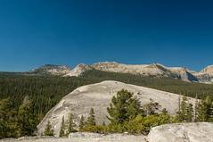 IMG_6687-Edit (dangerismycat) Tags: california yosemite yosemitenationalpark tuolumnemeadows lembertdome raggedpeak