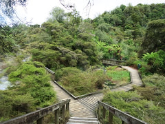 wmgu047path (invisiblecompany) Tags: 2017 travel nz newzealand rotorua waimangu volcanic geothermal