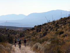 Mountain Bikers in Big Bend