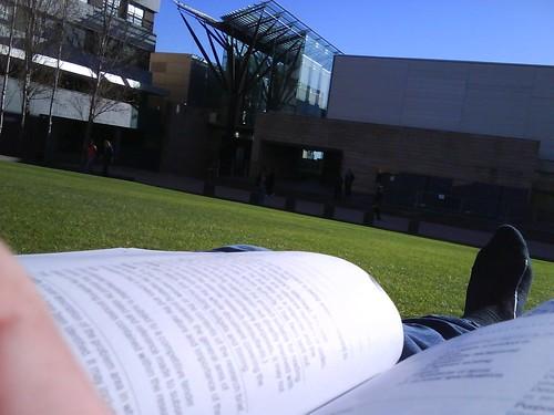 Lawn reading