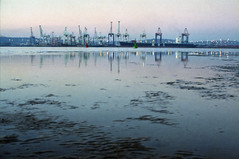 Harbour At Low Tide