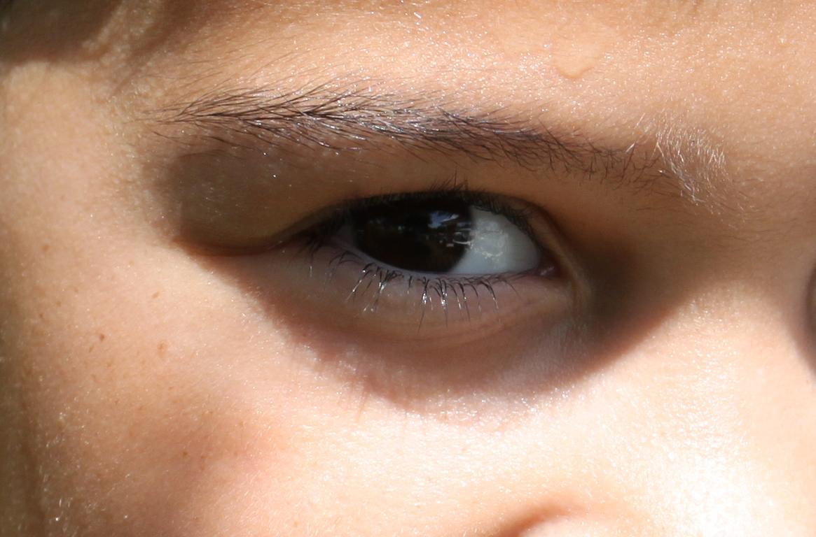 IMAGE: http://farm3.static.flickr.com/2541/3780598946_c4c0e666c8_o.jpg