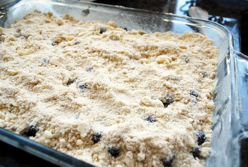 Blueberry Bars (1)