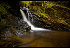 Puck's glen (Oli Woods.) Tags: longexposure brown white green wet water geotagged scotland waterfall moss nikon rocks whitewater branch argyll tripod running nd translucent stick flowing seethrough 1855 ferns ardbeg longshutter moisture damp sandbank cascading dunoon trickle slik sprintpro benmore locheck wanderingabout d40 ardentinny strachur singleexposure neutraldensityfilter pucksglen glenmassan rashfield 10stopnd bwnd110 quadruplefalls geo:lat=5601976 geo:lon=4972354 cometoscotland