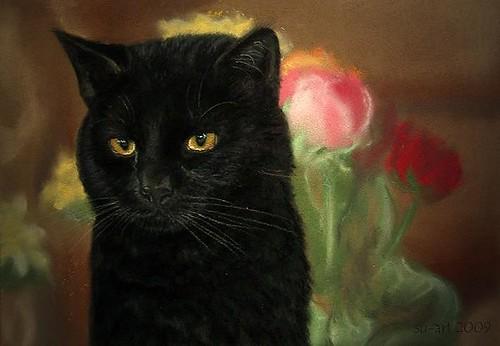 black cat von Nordlichter4.