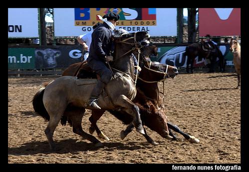 Paleteada Argentina 2009.