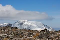 初冠雪の北鎮岳