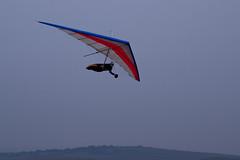 my beautiful glider