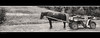 My Old Car (Ben Heine) Tags: horse mountain green nature car sport sepia wagon cheval fight friend cowboy poem power carriage ride spirit transport meadow poland polska run ami transportation vehicle brave mustang steed throat challenge andria stallion soar bold gallop strain zakopane pologne calèche équitation énergie écologique benheine puresang hubzay