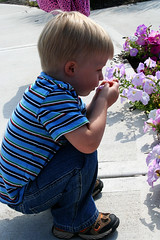 Just Smell the Flower Brendan (LilMissBossy) Tags: cuties