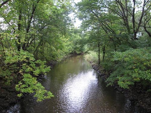 Minnehaha Creek Upstream from Hiawatha Golf Course