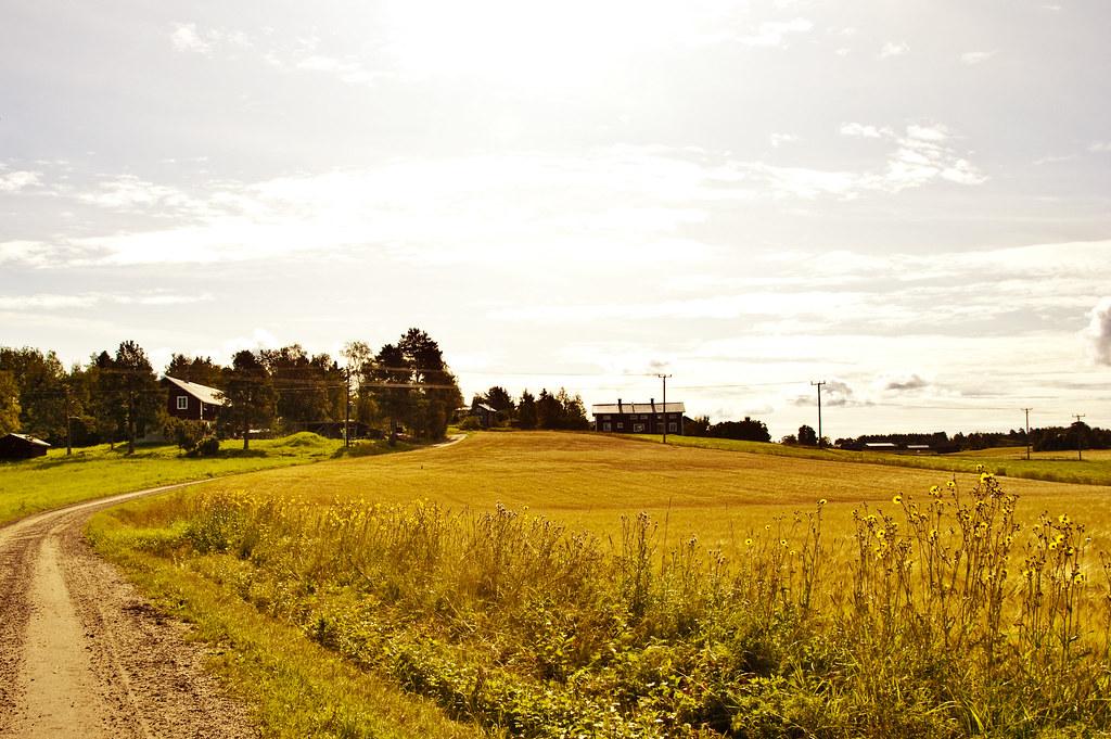 swedencountryside