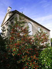 church and berries
