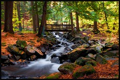 Gatineau Park - Stream (Richard Pilon) Tags: autumn fall beautiful stream gatineaupark potofgold naturesfinest bej goldstaraward natureselegantshots ubej vividstriking
