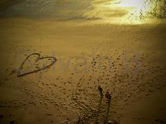 Heart On the Beach ! (sylvain_beauchamps) Tags: sea sun mer france love beach french soleil couple heart amor sable bretagne coeur breizh amour lover plage corazon manche saintmalo amoureux bzh