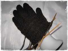 fingerhandschuhe2009.2c