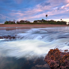 Anything that excites me for any reason, I will photograph; not searching for unusual subject matter, but making the commonplace unusual. Edward Weston (tropicaLiving - Jessy Eykendorp) Tags: sea sky bali seascape beach nature water indonesia landscape rocks shoreline westcoast echobeach edwardweston canggu efs1022mmf3545usm outdoorphotography canoneos50d tropicaliving vosplusbellesphotos september92009 rawproccessedwithdigitalphotopro tiffproccessedwithadobephotoshopcs3 hitechfilterndgrad anythingthatexcitesmeforanyreasoniwillphotographnotsearchingforunusualsubjectmatterbutmakingthecommonplaceunusual