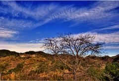 paesaggio autunnale (marcocim) Tags: sky landscape italia sony cielo 300 marche panorma sonyalphaitalia sonysti marcocim