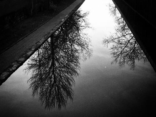 Canal, Nottingham