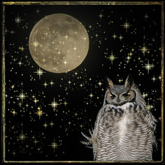 Silent Night (durtcom) Tags: moon night photoshop stars owl msh silentnight canonpowershots3is msh1209 msh120917 startexturebyjoessistah moonbyme owlbyme