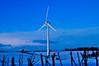 Have You Ever Had It Blue... (Chris H#) Tags: blue snow northamptonshire turbine windturbine windfarm s3000 haveyoueverhaditblue cranfordstjohn nikond5000 itwasmorethan10degreesc withthewindchill
