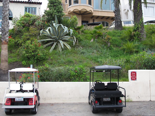 agave and golf carts on Catalina Island