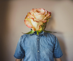 37/365 (Chris Gray Photo) Tags: frail flower head shirt indoors portrait selfportrait conceptual fineart surreal photoshop canon 50mm 365project rose growth