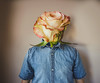 37/365 (Chris Gray Photomedia) Tags: frail flower head shirt indoors portrait selfportrait conceptual fineart surreal photoshop canon 50mm 365project rose growth