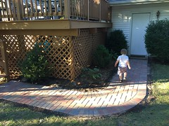 """Paul Walks on the New Brick Path • <a style=""""font-size:0.8em;"""" href=""""http://www.flickr.com/photos/109120354@N07/32987256951/"""" target=""""_blank"""">View on Flickr</a>"""