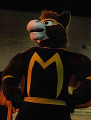 GT, the Masked Mustang!