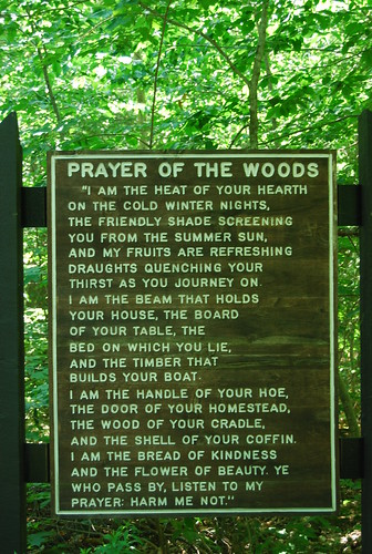 Prayer of the Woods by krist.lawrence